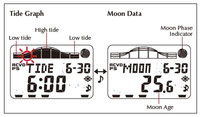 QW-3215 Tide Graph and Moon Data